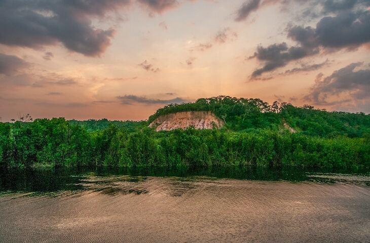Crise da Amazônia gera engajamento em páginas do agronegócio