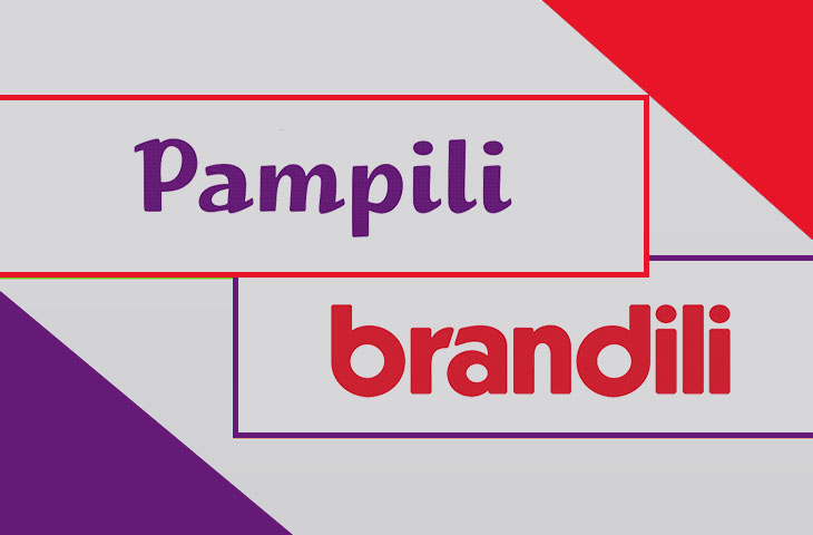 O que a batalha de páginas do Facebook entre as marcas Pampili e Brandili nos revela?
